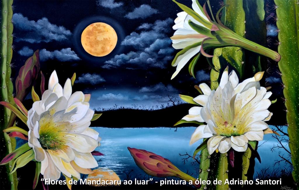 Flores de Mandacaru ao luar Adriano Santori postar